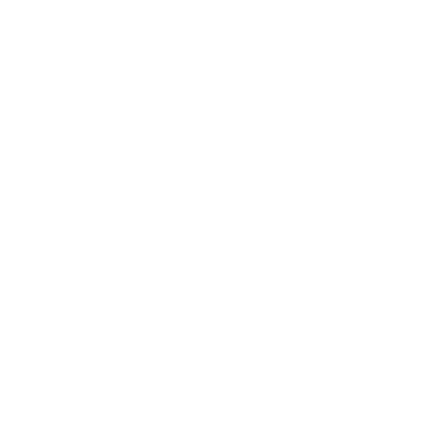White Light The Night Logo.png